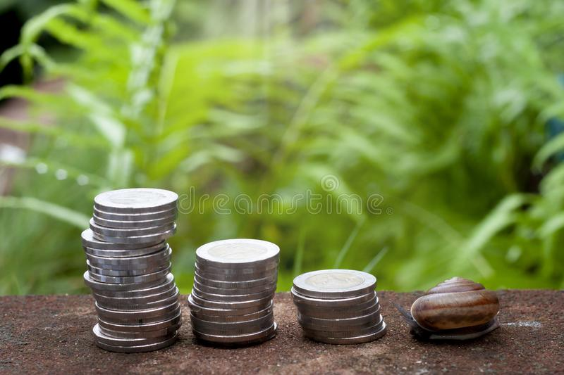 Financial of money and snail. royalty free stock image
