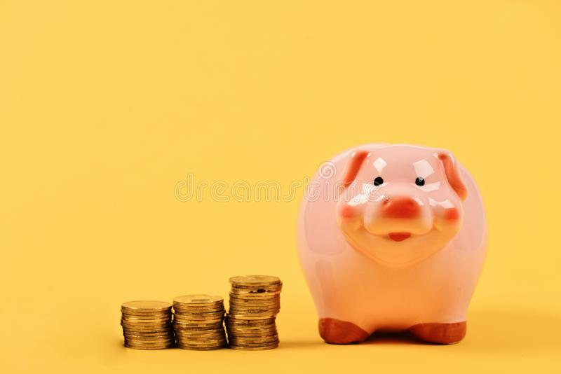Financial profit and calculations concept. Investments and income growth idea. Piggy bank stands next to stacks of coins. Financial profit and calculations stock photos