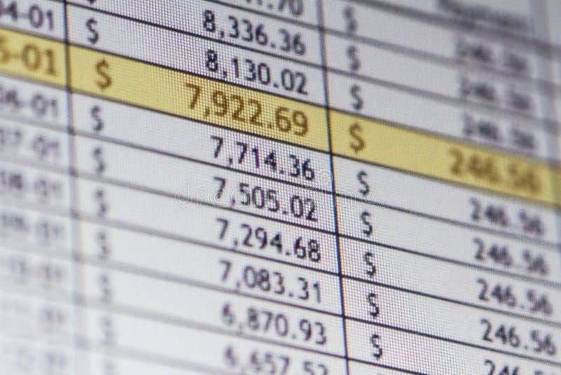 Financial Spreadsheet. A computer screen shows a financial spreadsheet
