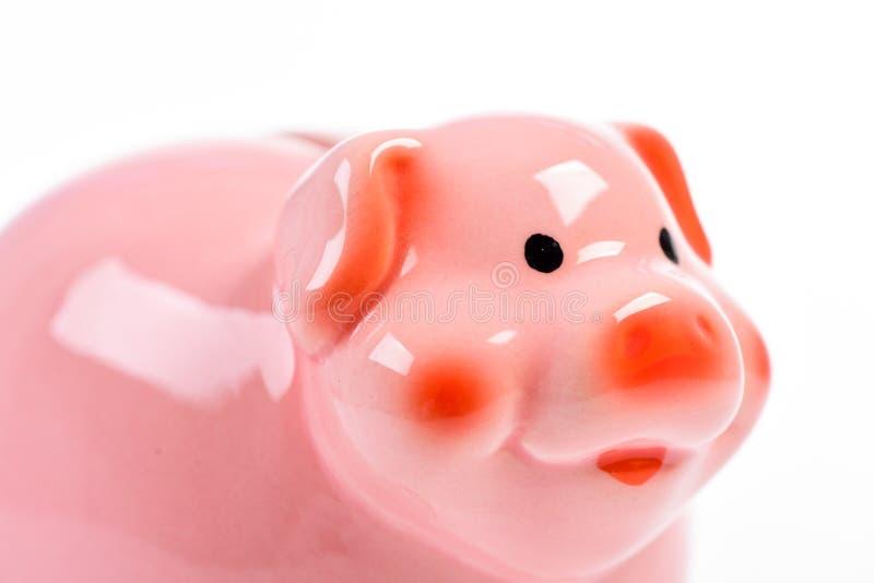 Financieel probleem inkomensbeheer Planningsbegroting Ge?soleerdn spaarvarken op wit geldbesparing Bankwezen en winst royalty-vrije stock foto's