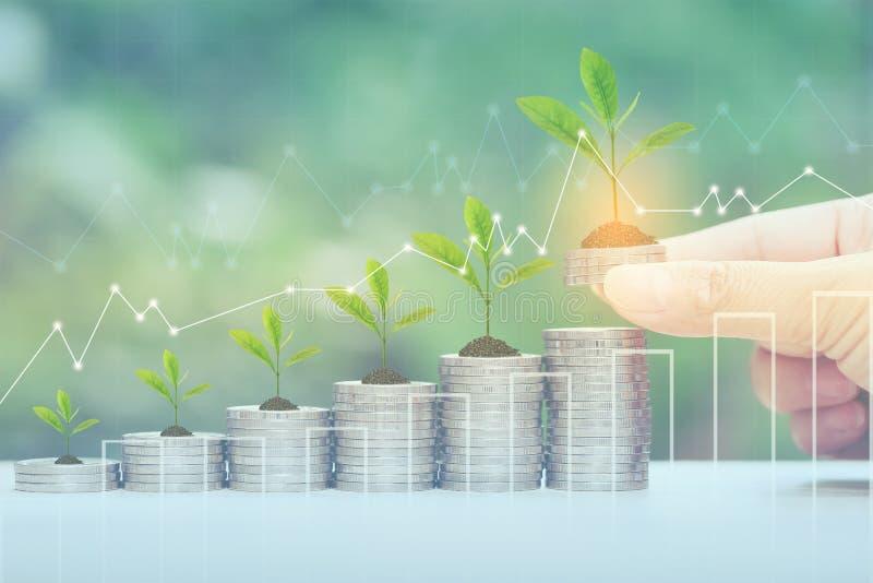Finanse, kobiety ręki mienia rośliny dorośnięcie na stercie monety pieniądze, i wykres na naturalnym zielonym tle, inwestycji i b zdjęcia stock