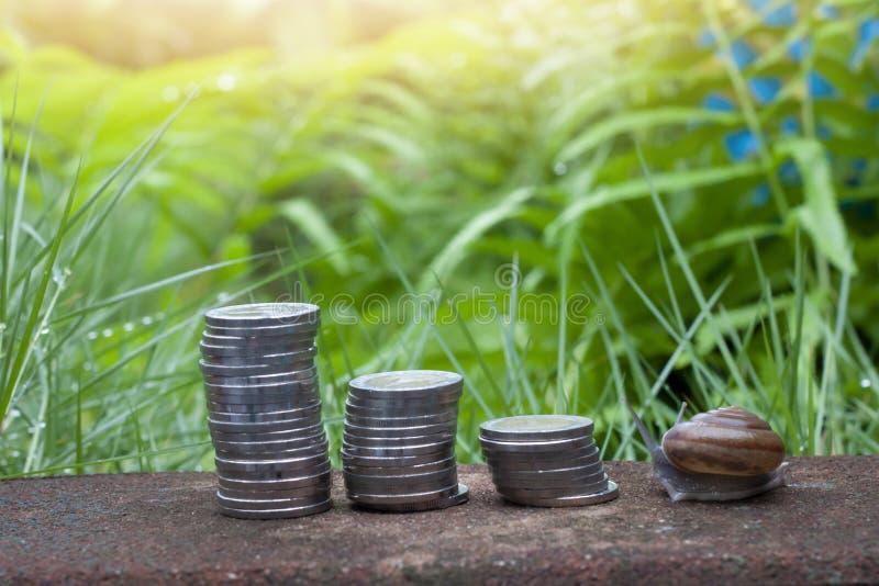 Finansiellt av pengar och snigeln arkivbild