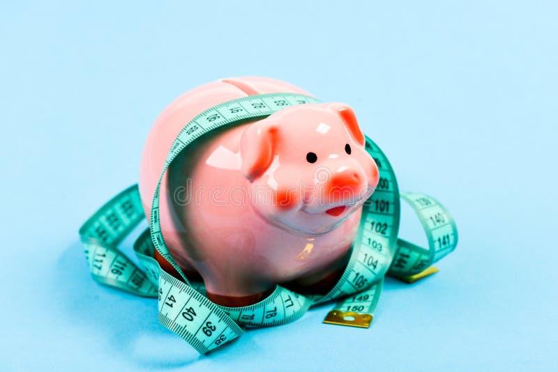 Finanzdi?t Gelddiät Finanzierung und Handel schlechte Bezahlung Stecken eines Geldes in eine piggy Querneigung ablagerung Darlehe lizenzfreie stockfotos