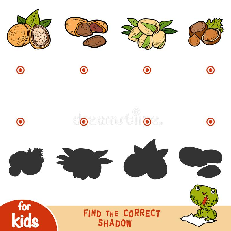 Find the correct shadow, education game. Cartoon set of nuts. Find the correct shadow, education game for children. Cartoon set of nuts stock illustration