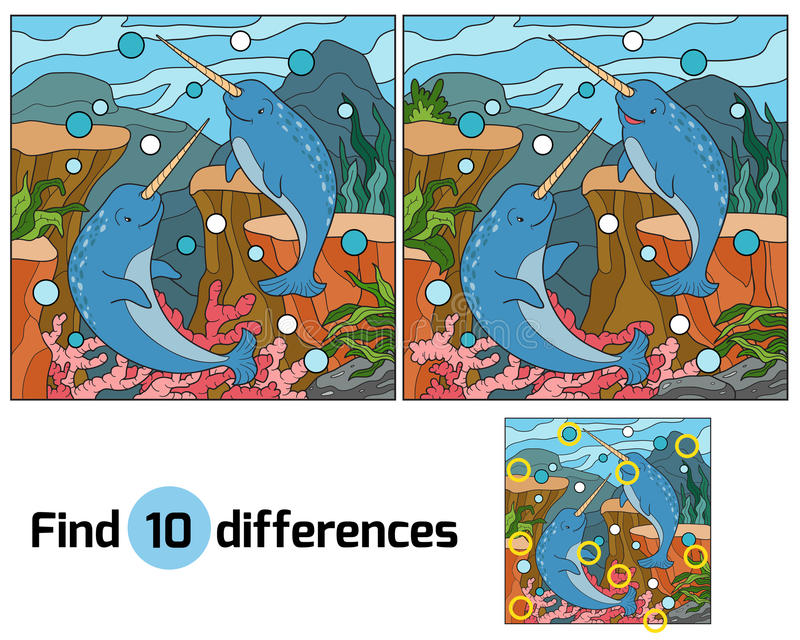 Find differences (narwhal). Find differences game for children (narwhal vector illustration