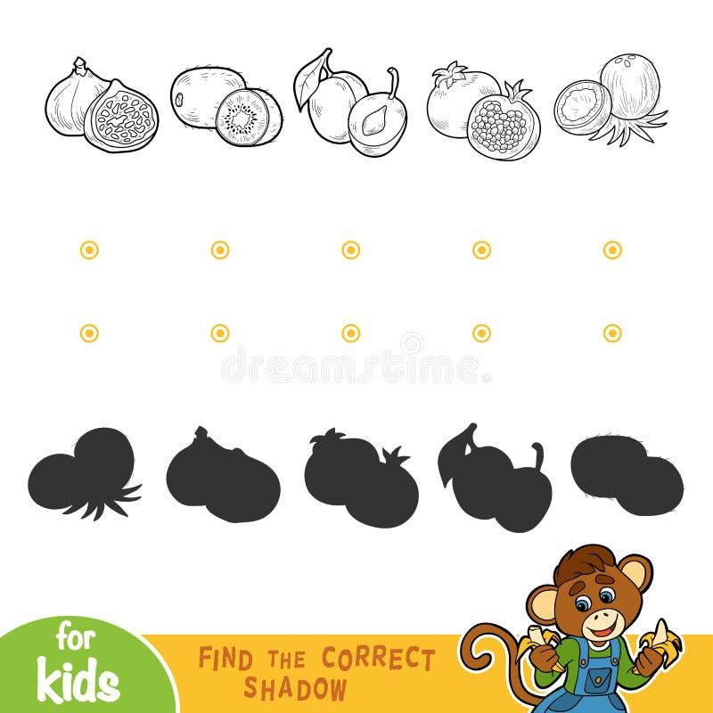 Finden Sie den korrekten Schatten Schwarzweiss-Früchte stock abbildung