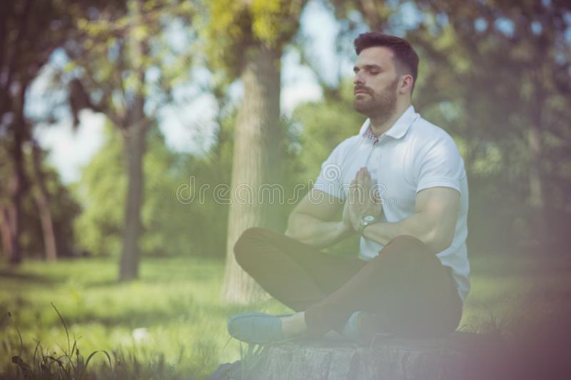 Finding enlightenment in nature royalty free stock images