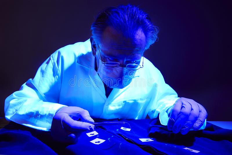 Finding of evidences on criminal`s shirt under UV light by technician. Checking of suspected person dress by forensic specialist in crime lab royalty free stock images