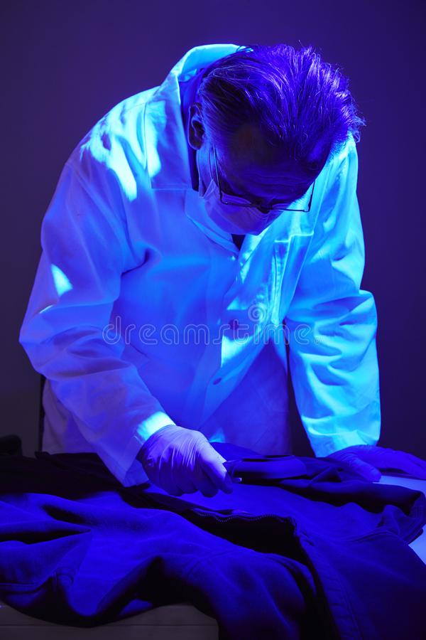 Finding of evidences on criminal`s shirt under UV light by technician. Checking of suspected person dress by forensic specialist in crime lab royalty free stock photo