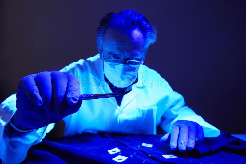 Finding of evidences on criminal`s shirt under UV light by technician. Checking of suspected person dress by forensic specialist in crime lab royalty free stock photos