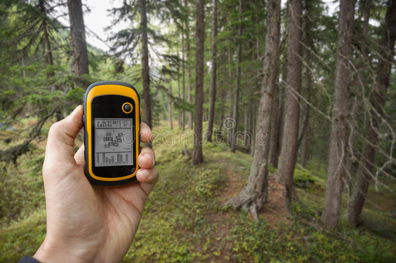 Finding the right position in the forest via gps ( blurred background) stock photography