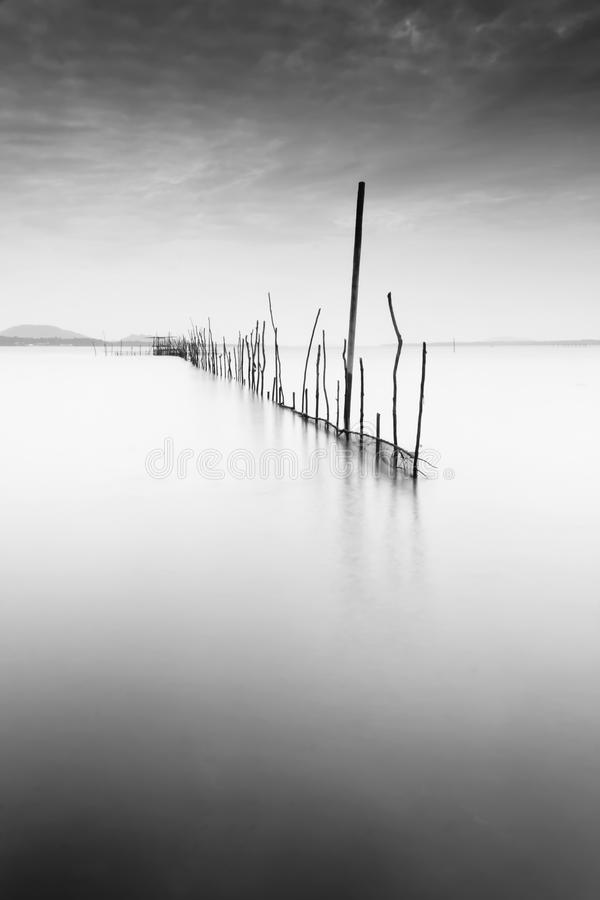 Download Fine art black and white stock photo. Image of fine, gloomy - 28611908