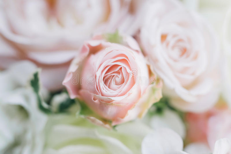 Fine art bridal bouquet in natural light royalty free stock photos