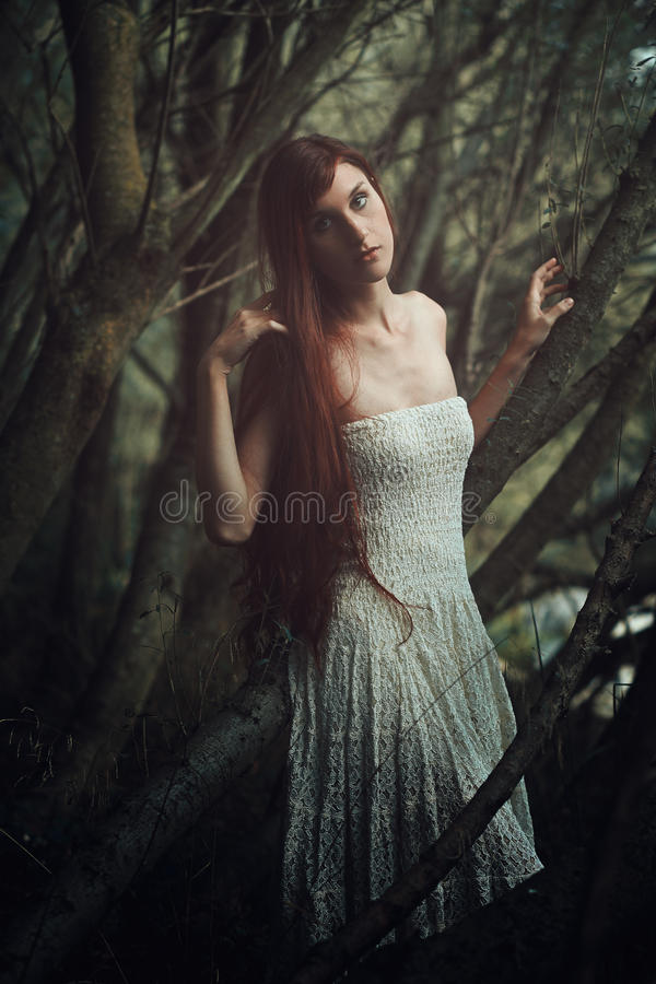 Fine art portrait in the woods royalty free stock photography