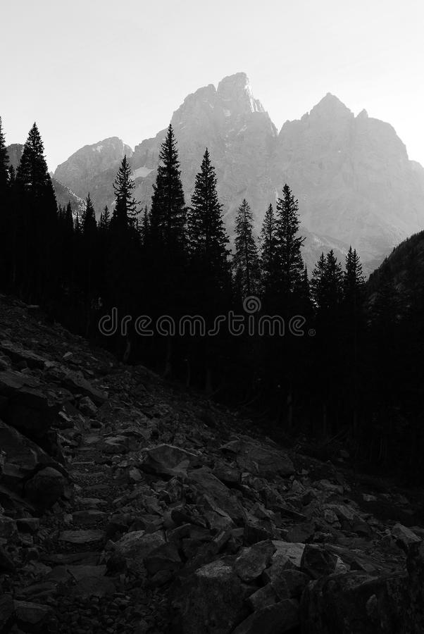 Rugged Wilderness Mountains Granite Peaks with Pine Forest Black royalty free stock image