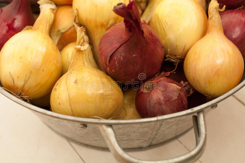 Fine crop of vegetables from your own garden royalty free stock images
