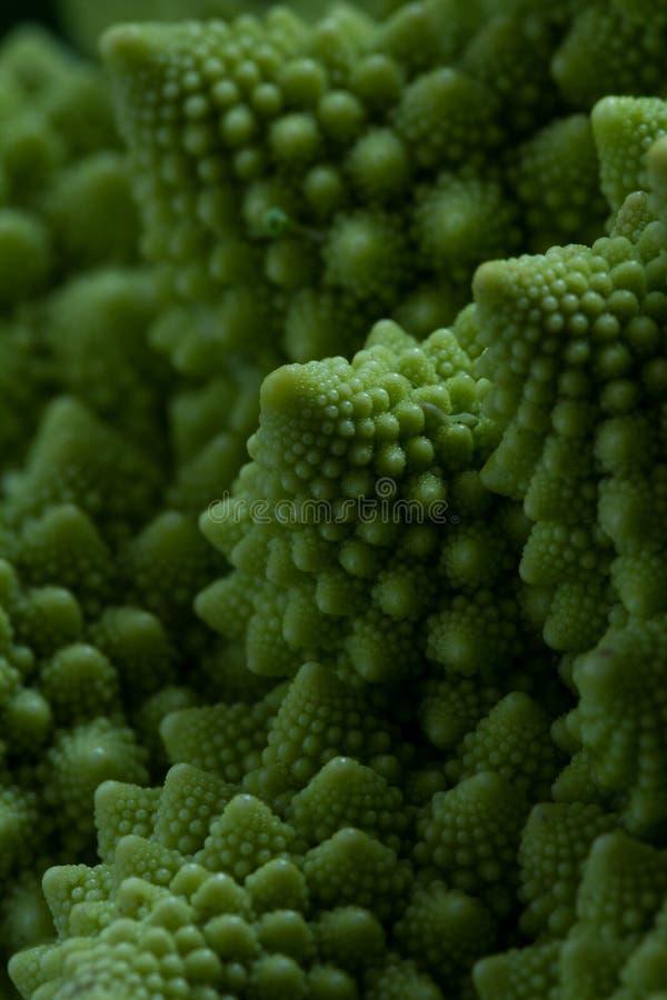 Fine del broccolo di Romanesco in su fotografia stock