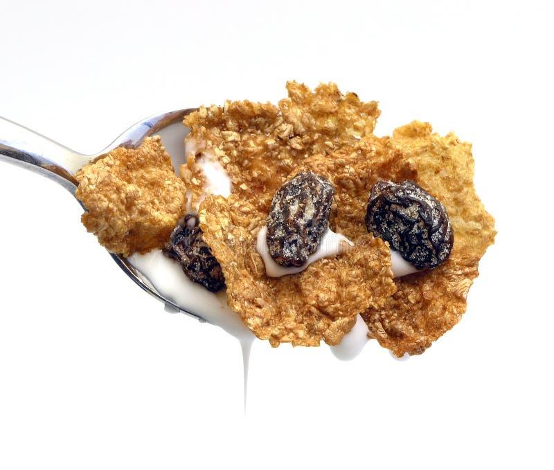 Fine del cereale fotografia stock libera da diritti
