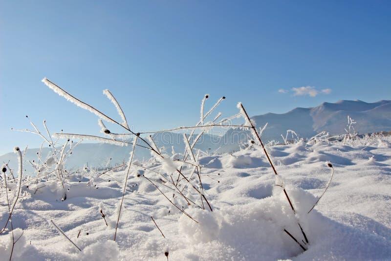 Fine del paesaggio di inverno su fotografie stock libere da diritti