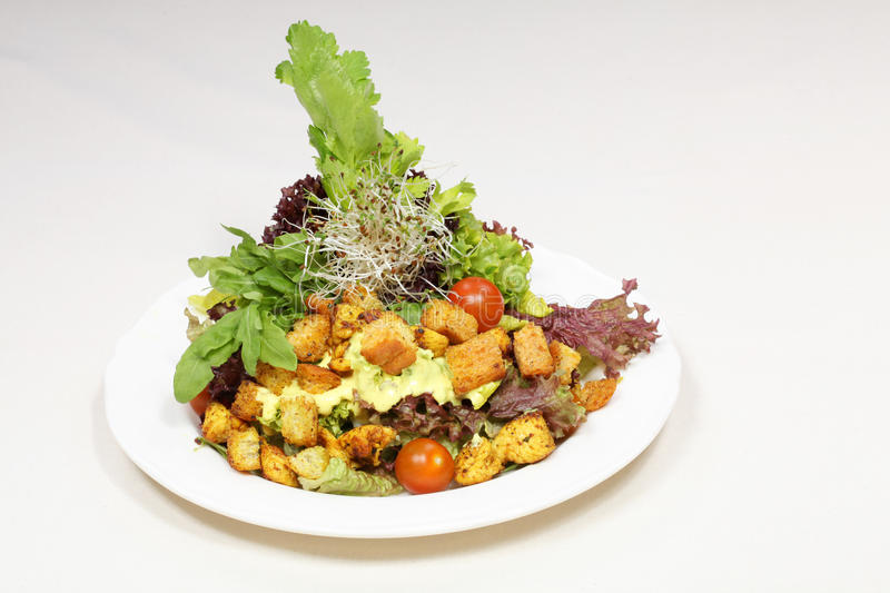 Download Fine Dining Meal, Chicken And Croutons Salad Stock Photo - Image: 18566990