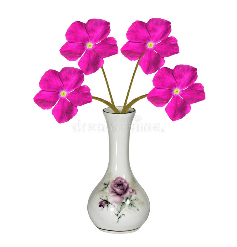 A Fine And Expensive Piece Of Home Decor Isolated On White, It Is A Vase  Photo HDR Image With Pink Attractive Periwinkle Flowers In It.
