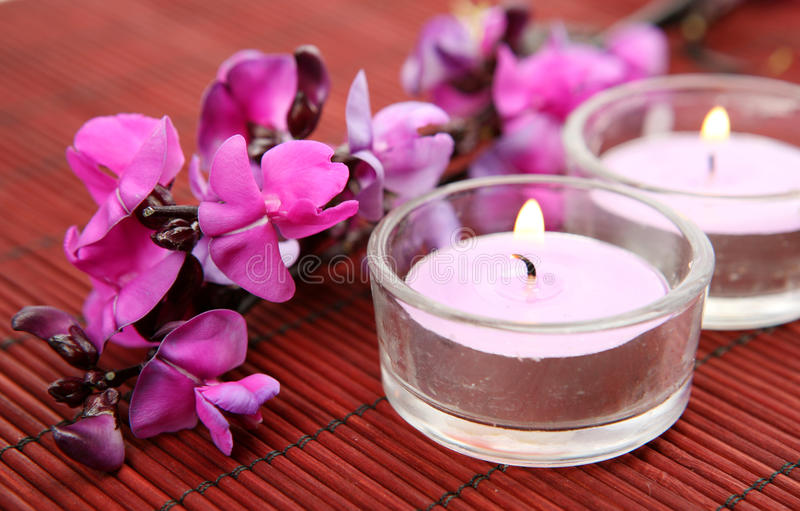 Fine flowers and candles royalty free stock photo