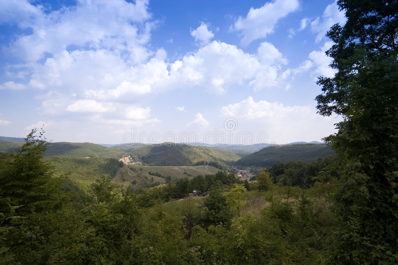Fine forest valley stock photography