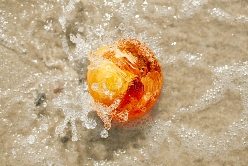 Fine a forma di palla di pietra ambrata della spruzzata del Mar Baltico su fotografia stock