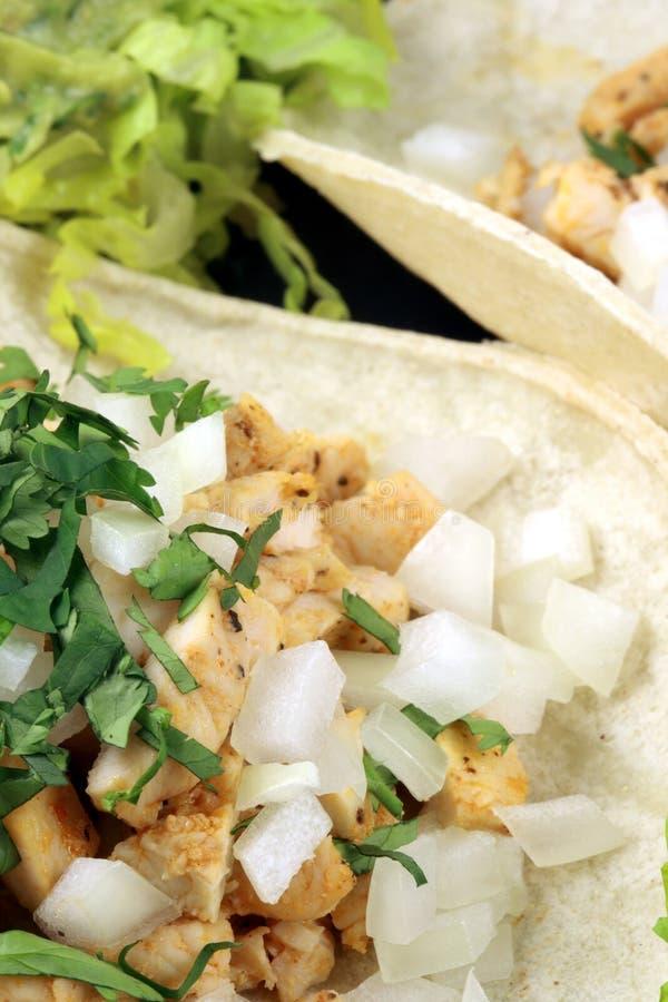 Fine gourmet tacos stock image