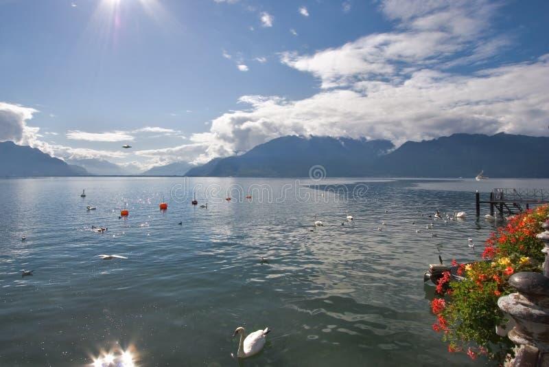 Fine Lake Leman fotografia stock