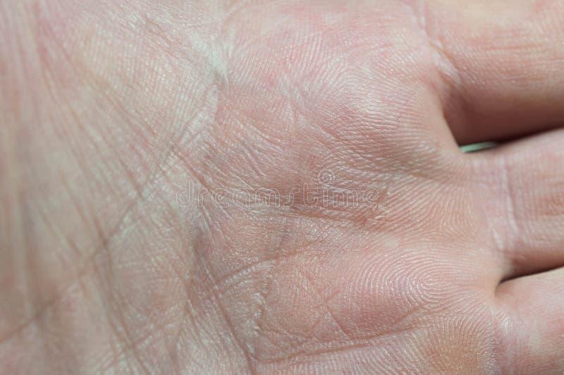 Fine maschio caucasica della palma sul macro colpo fotografie stock libere da diritti