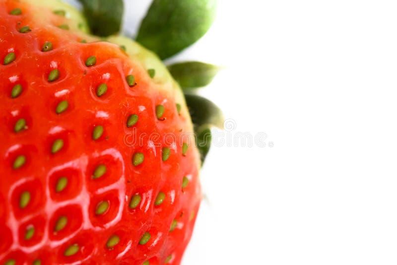 Fine naturale rossa della fragola sulla macro foto isolata su fondo bianco fotografie stock