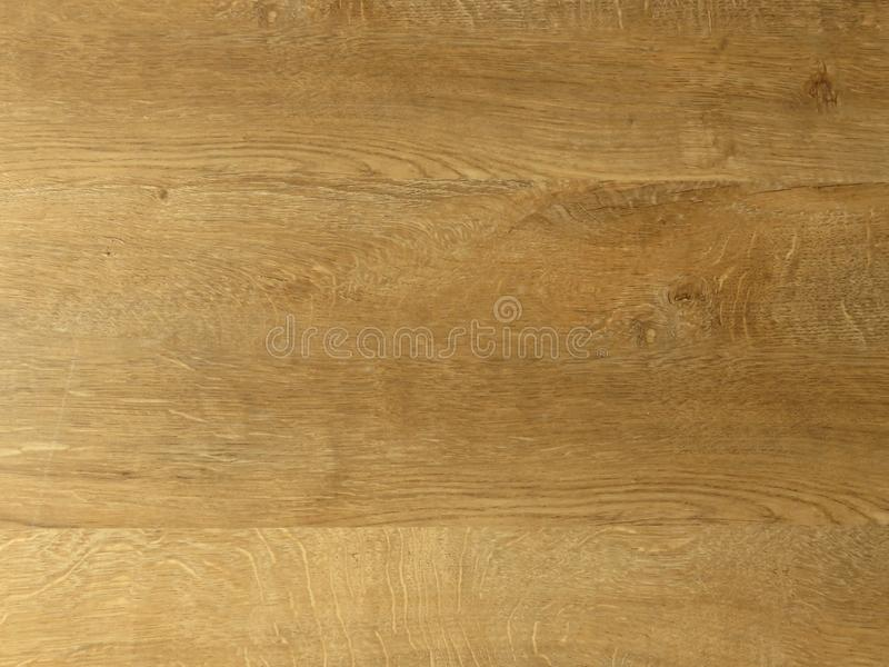 Fine oak tree wood texture pattern background. Exquisite Design Oak Wood Grain. stock images