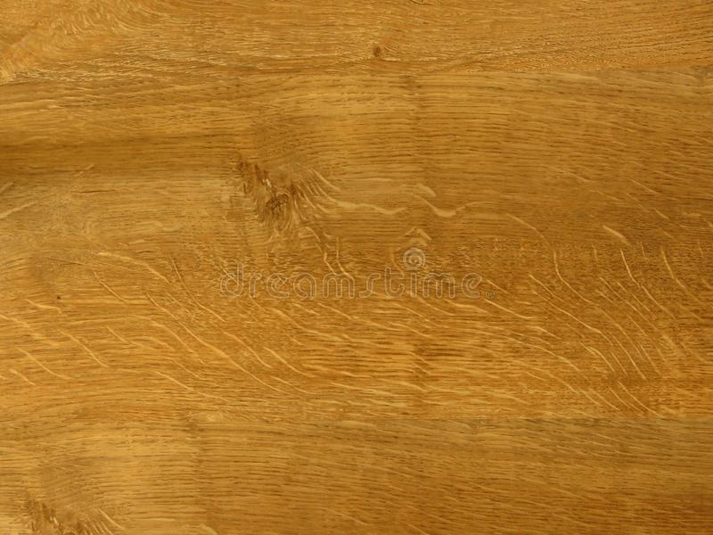 Golden oak. Fine oak tree wood texture pattern background. Exquisite Design Oak Wood Grain. royalty free stock images