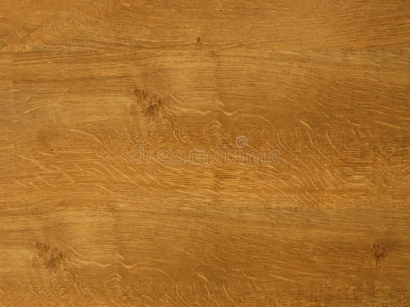 Fine oak tree wood texture pattern background. Exquisite Design Oak Wood Grain. royalty free stock photos