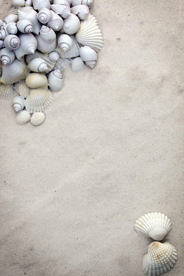Free Fine Sand Stationary Background Royalty Free Stock Photo - 11569775