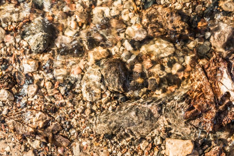 Sand, stones of different size and leaves under the water in the sunlight, abstract background royalty free stock photo