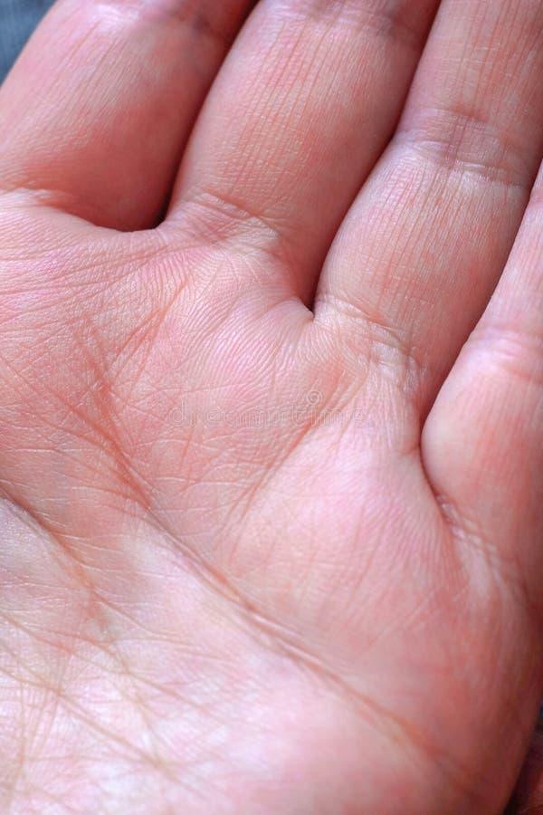 Fine - su della mano umana, il valore delle linee sulla palma di struttura, mano femminile fotografie stock