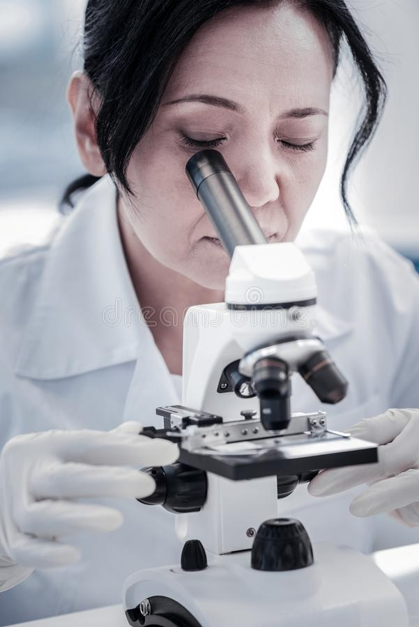 Fine su dello scienziato femminile che analizza lo scorrevole del microscopio immagine stock