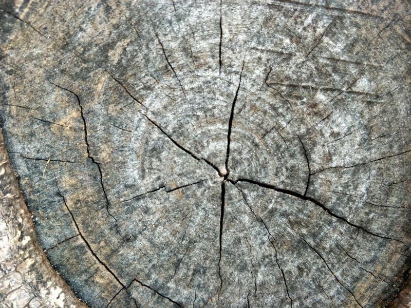 Fine su vecchia struttura di legno di vecchio uso di legno della corteccia come sfondo naturale fotografia stock libera da diritti