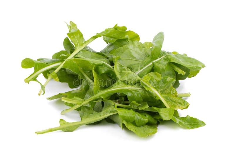 Fine sul colpo dello studio delle foglie fresche verdi di rucola isolate su wh immagini stock libere da diritti