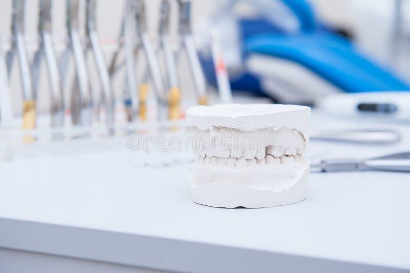 Fine sul modello dentario della mandibola del gesso sui precedenti dell'insieme dell'ortodontista dei morsetti e delle pinze Fuoc fotografia stock libera da diritti