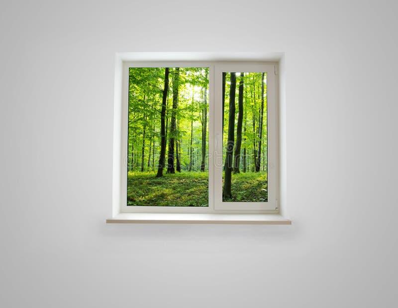 finestra immagine stock