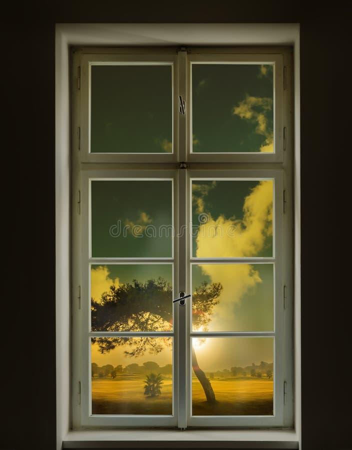 Finestra bianca classica e vista di un albero fuori fotografia stock