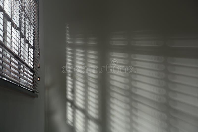 Finestra con i ciechi orizzontali nella sala Tonificato in bianco e nero fotografie stock libere da diritti