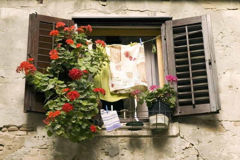 Finestra con i fiori e la lavanderia fotografia stock for Fiori con la e