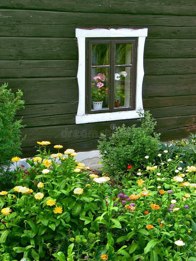Finestra con un flower-bed fotografia stock
