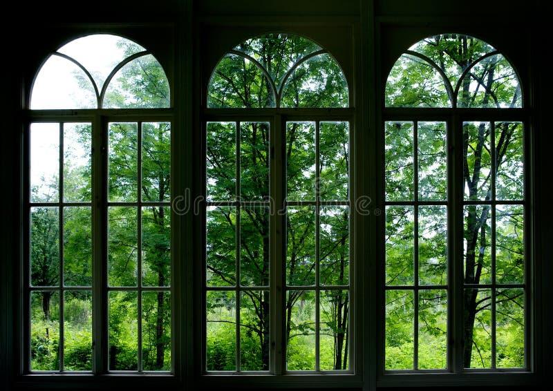 Finestra del giardino fotografia stock libera da diritti