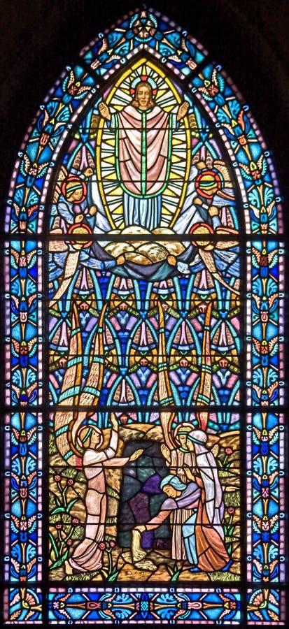 Download Finestra Di Stained-glass 97 Immagine Stock - Immagine di multicolored, trasparente: 7312557