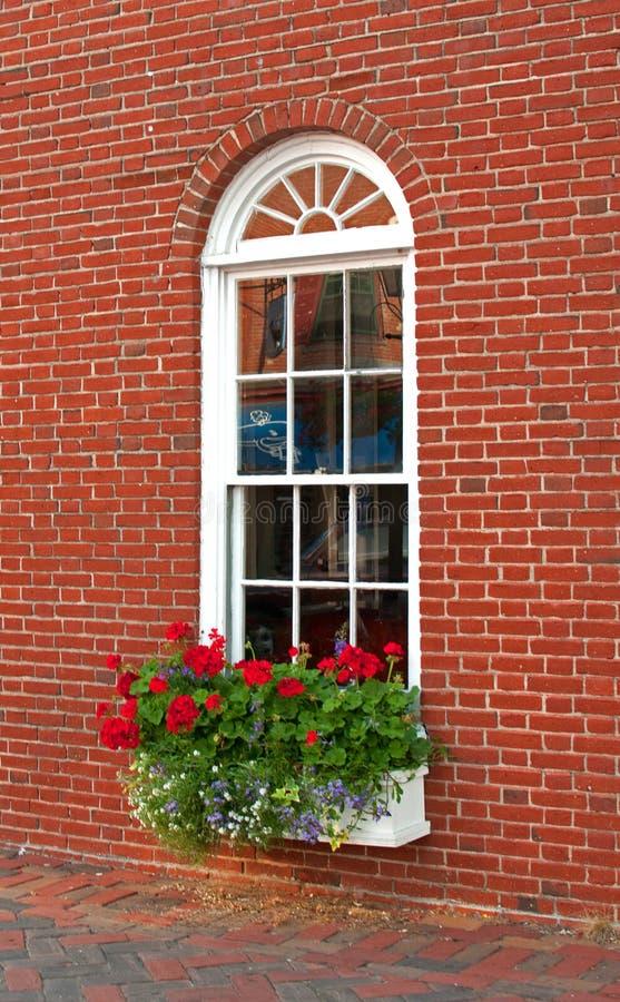 Finestra e fiori della casa con mattoni a vista di brown for Finestra con fiori disegno